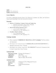 Resume Headlines Samples Headline Example Examples For Banking Aviation Mechanic