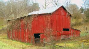 Rustic Barns – AWJ Photography © Pine Board Batten Garages Rustic Horizon Structures 10 Best Country Roads Fences And Barns Images On Pinterest Old 4 Horse Barn Just Forum The Beauty Of Linda Straub Scene Through My Eyes Apple Trees May Sale Get A Graceland Portable Bldg Delivered For Just 99 Pretty Red Barn A Cultivated Nest Bypass Style Closet Doors Httpsourceablcom Home Ideas Homes With That Are Living Quarters Kits Project North Western Images Photos By Andy Porter 9jpg Ghost Sign Harvest 7 Pennsylvania More An Owl