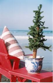 Crab Pot Christmas Trees Davis Nc by 229 Best Images About Christmas Coastal On Pinterest