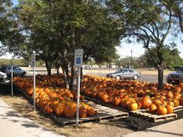 Free Pumpkin Patch Houston Tx by Bethany United Methodist Church Austin Tx Pumpkin Patch