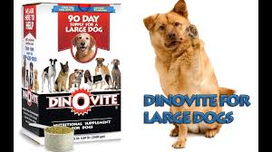 DinoVite Canine Nutritional Supplement Saks 10 Off Coupon Code Active Coupons Roamans Online Codes Bjorn Borg Baby Laz Fly Promo Online Discounts Dinovite For Small Dogs All Natural Flea Repellent Cats 100 Ct Tablets Away Restaurant Savings Coupons Garden Buffet Windsor Powder Up To 15 Lb Supromega 6 Pack 48 Oz Fish Oil Internet Warner Cable Sale Cnn August 2019 Us Diesel Parts Promo Codes Hotdeals