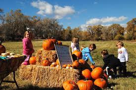 Pumpkin Patches Near Colorado Springs Co by Guidestone Colorado Pumpkin Patch U0026 Harvest Festival Colorado