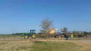Big Orange Pumpkin Patch Celina Texas by Preston Trail Farms U0027 Big Orange Pumpkin Farm Gunter Having Fun