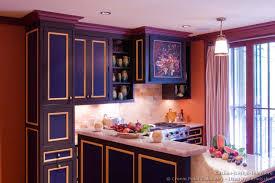Purple Kitchen Cabinets Splendid Design Inspiration 11