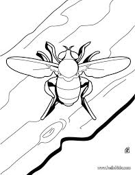 Free Coloring Pages Bees Small Beetle Page Source Printable And Hives