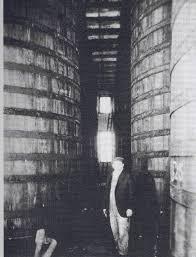 Porcupine Eating Pumpkin Gif by Beer History Beer U0026 More In Food