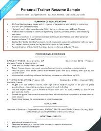 Resume Summary Examples Training And Example Of Elegant Skills Within Qualification