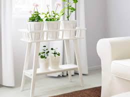 Best Bathroom Pot Plants by Plant Indoor Plants Suitable For Bathrooms Small House Plants