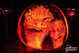 Roger Williams Pumpkin by We U0027re Going To The Zoo Zoo Zoo How About You You You