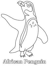 Penguins 12 Animals Coloring Pages