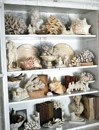 Rock Collection Display Shelf Best Displaying Collections Ideas On Shell Glass Cabinets