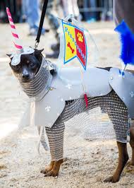 Tompkins Square Halloween Dog Parade by Photos The Best Dogs In Costume At The Tompkins Square Halloween