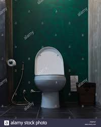 weißer keramik spülen toilette im badezimmer mit wc papier