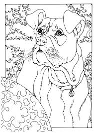Coloring Page Boxer