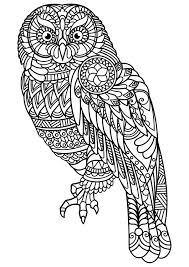 Animal Coloring Pages Pdf In