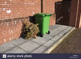 Waste Management Christmas Tree Pickup Mn by Dumped Christmas Tree Waiting For Rubbish Collection At The End Of