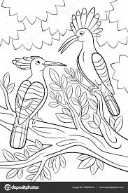 Coloring Pages Two Beautiful Hoopoes Sit On The Tree Branch Stock Vector