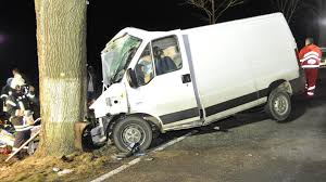 100 Cow Truck Delivery Truck Crashes Into Pregnant Moose Cow Tech2
