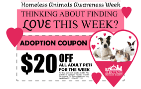 Homeless Animals Awareness Week Coupon - Heritage Humane Amazon Promo Codes And Coupons Take 10 Off Your First Every Major Retailers Cutoff Dates For Guaranteed Untitled Enterprise Coupons Promo Codes November 2019 25 Off Cafe Press Deals 1tb Adata Xpg Sx8200 Pro M2 Pcie Nvme Ssds Slickdealsnet Homeless Animals Awareness Week Coupon Heritage Humane The Best Discounts On Amazons Fire Tv Stick 4k Belizean Kitchen Belko Dicko Pages Directory Ibotta Referral Code Get 20 In Bonuses Ipsnap Never Forget A