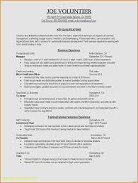 Music Industry Resume Objective Fresh 37 Examples Resumes For Jobs Of
