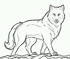 Wolf Coloring Pages Free Printable For Kids Gallery Ideas