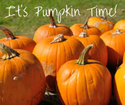 Tucson Pumpkin Patch by Pumpkin Patches Corn Mazes And Fall Fests Near Tucson Macaroni Kid