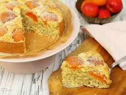 sommerlicher aprikosen kokos kuchen dinkelliebe backblog