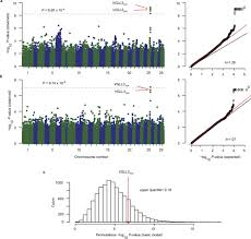 Browning Floor Mats Academy by Dependent Dominance At A Single Locus Maintains Variation In
