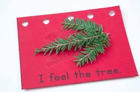 Christmas Tree Books For Kindergarten by 5 Senses Christmas Book U0026 Q Tip Snowflakes Preschool And