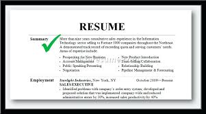 Summary For Resume Professional Examples Throughout Executive Intended