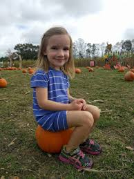 Ms Heathers Pumpkin Patch Louisiana by Knowing The Knolls