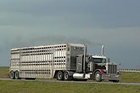 100 Ccx Trucking A Few Pics From Last Week