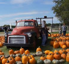 Real Pumpkin Patch Dfw by Dallas Pumpkin Patch Preston Trail Farms Gunter Tx Photos U0026