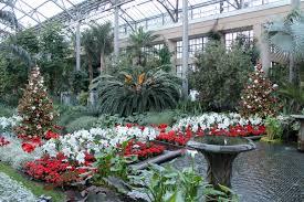 Sams Club Christmas Tree Train by George U0027s Talks And Trips Garden Housecalls