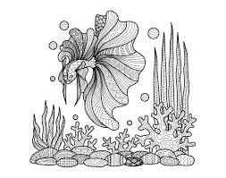 Adult Zentangle Fish On Corals By Bimdeedee Coloring Pages Printable And Book To Print For Free Find More Online Kids