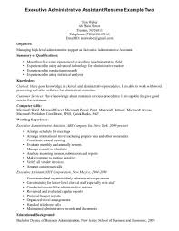 Resume Template Good Summary Examples Of Entry Level Word Resumes Executive Medical Assistant And Objective Plus Qualifications Knowledge