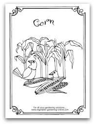 Garden Corn Coloring Page Printable