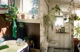 Pot Plants For The Bathroom by Bathroom Design Magnificent Succulents In Bathroom Small House