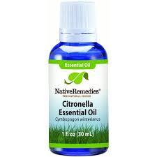 nativeremedies citronella essential oil 1 fl oz walmart com