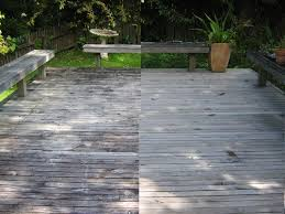 hit the deck deck cleaning removal of black mould wet forget