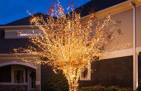 Wrap An Outdoor Tree With Christmas Lights Plus More Yard Decorating Ideas Lighted Snowflakes And Stars Hanging