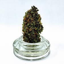 Stoner 15oz Mug Christmas Gift 420 Weed Mary Jane Drinking Etsy