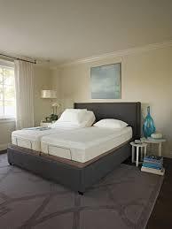 Tempurpedic Adjustable Beds by Tempur Pedic Tempur Ergo Collection Ergo Premier Adjustable Base