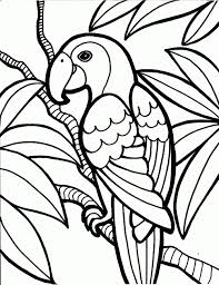 Free Coloring Pages Birds Lovely The Simple Bird Images Are Great For Any Age Child From