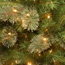 Christmas Tree 75 Pre Lit by Buy The 7 5 Ft Pre Lit Tacoma Pine Pencil Artificial Christmas