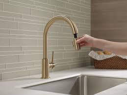 Delta Trinsic Kitchen Faucet Champagne Bronze by 9159 Cz Dst Single Handle Pull Down Kitchen Faucet