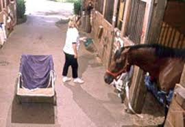 25 Timesaving Tips Around The Barn - The Horse Owner's Resource Small House Water Totes One Year Later Big Sky Dont Let Your Outside Faucets Freeze How Can I Get Hot In My Horse Barn The 1 Resource For To Avoid Frozen Pipes The Horserider Western Vintage Bar Build Garage Journal Board Automated Watering System Youtube Steps Winterize Idea Of How Hide A Water Spigot Landscaping Pinterest 83 Best Colorful Faucets Images On Old Dreaming Owning Your Own Farm Heres Very Nice Starter Piece Building Goat Part 2 Such And