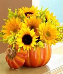 Colorado Springs Pumpkin Patch 2017 by Halloween Flowers Colorado Springs Co Enchanted Florist Ii