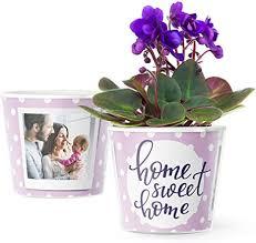 home sweet home deko geschenk blumentopf ø16cm für lila