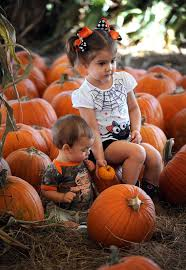 Sarasota Pumpkin Festival by Delayed Hunsader Pumpkin Festival Draws Hundreds Of Families To